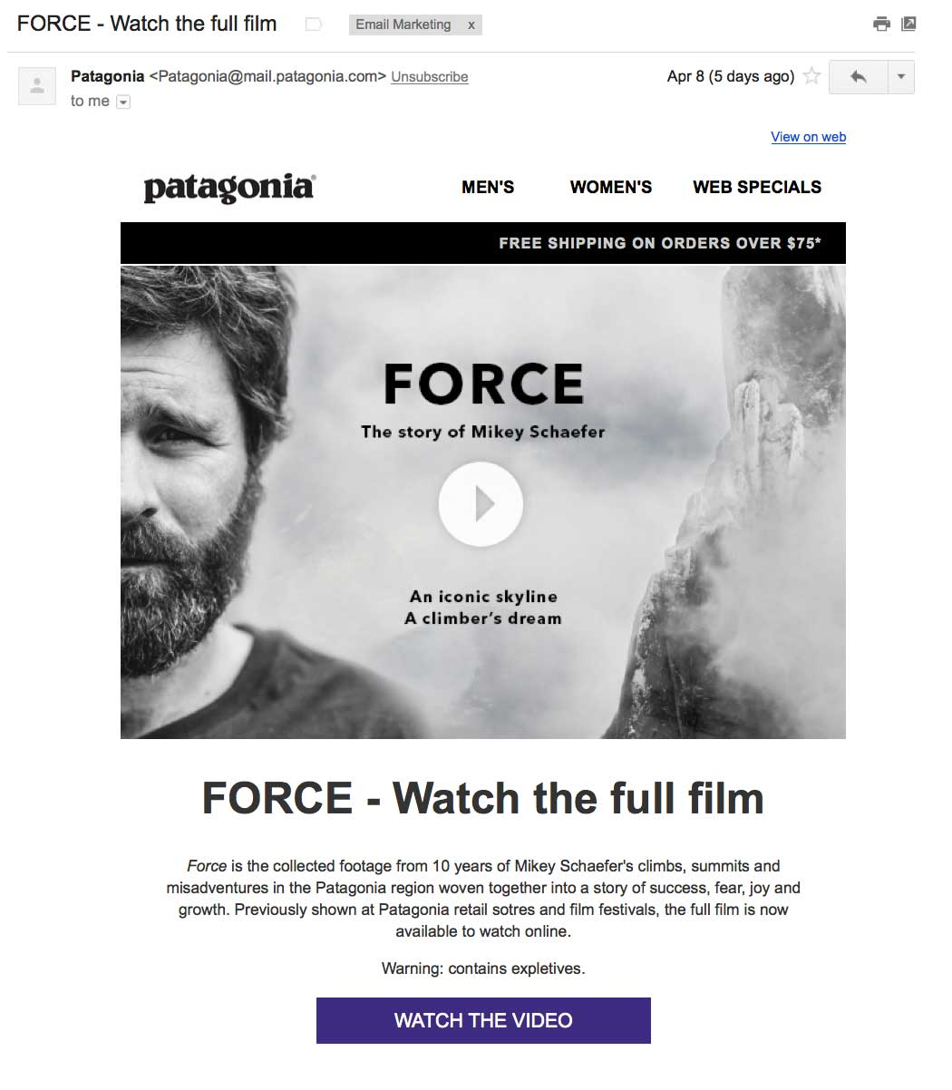Patagonia uses a static image that looks like a video in their emails, then sends subscribers to a landing page where the video actually plays. This technique for video email marketing is widely used.